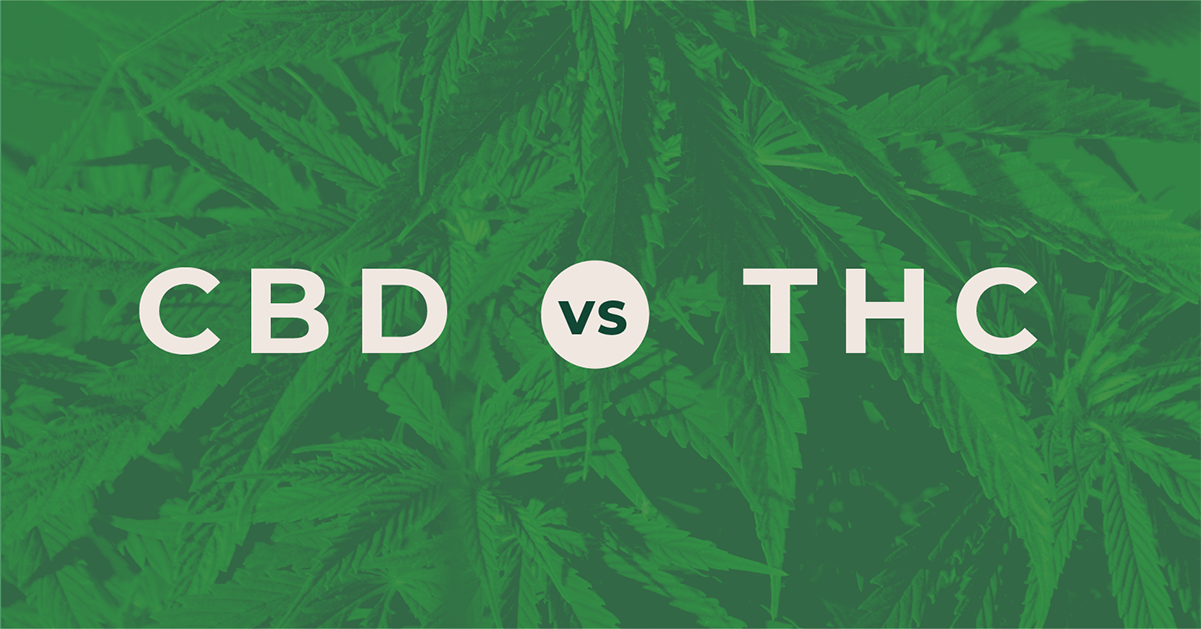 CBD and THC:  Similar and So Very Different