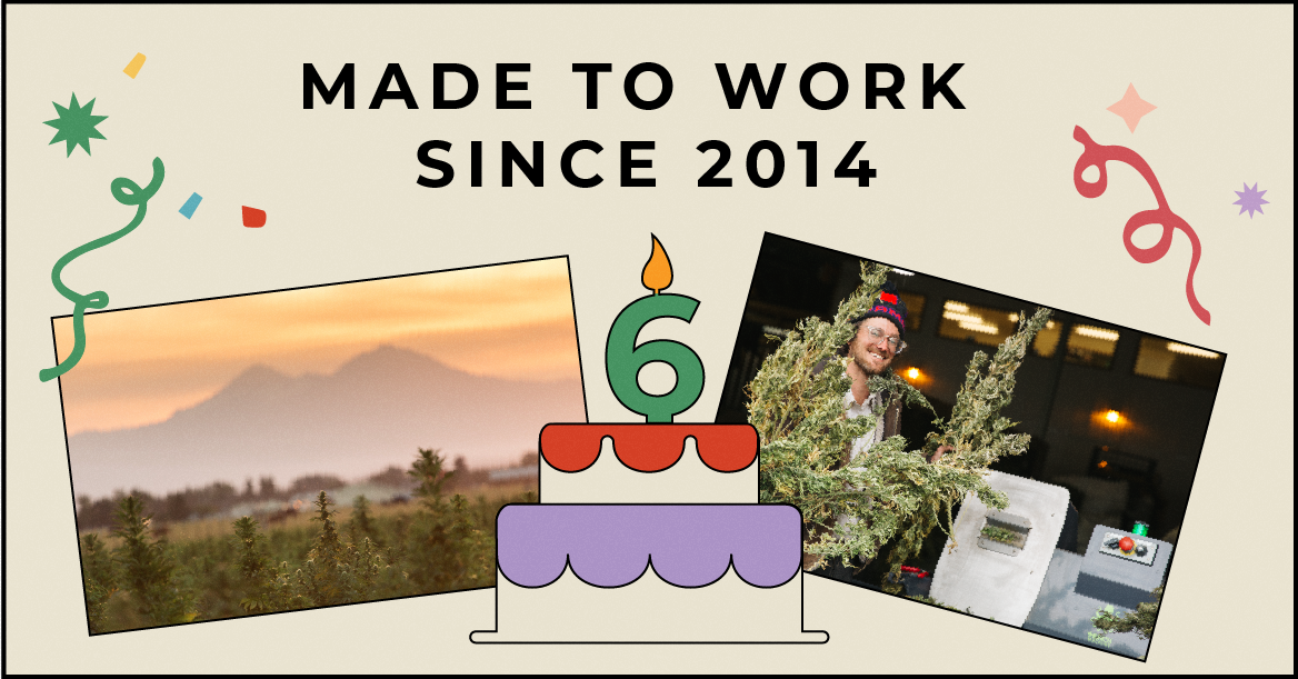 It's our 6th birthday. Look how far we've come.