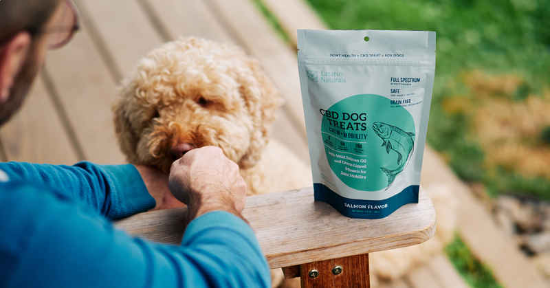 CBD for pets now includes tasty dog treats!