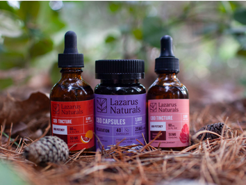 Three Lazarus Naturals products sitting in pine needles